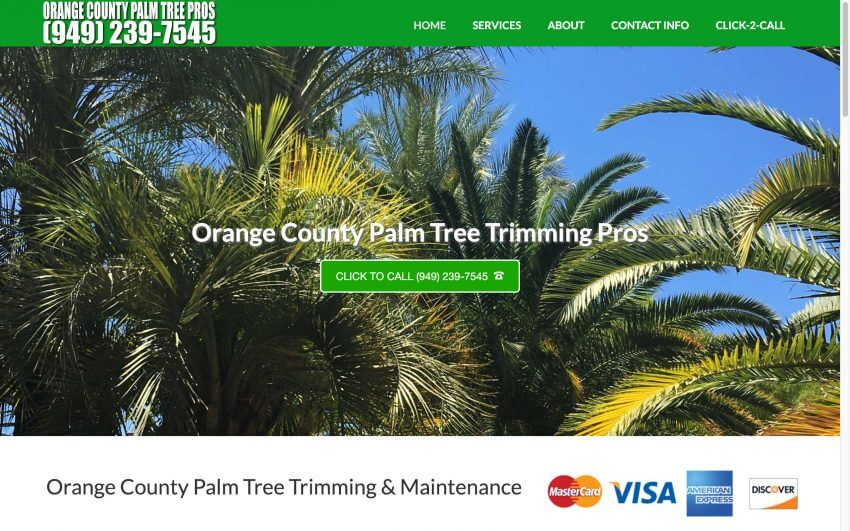 Orange County Palm Tree Pros